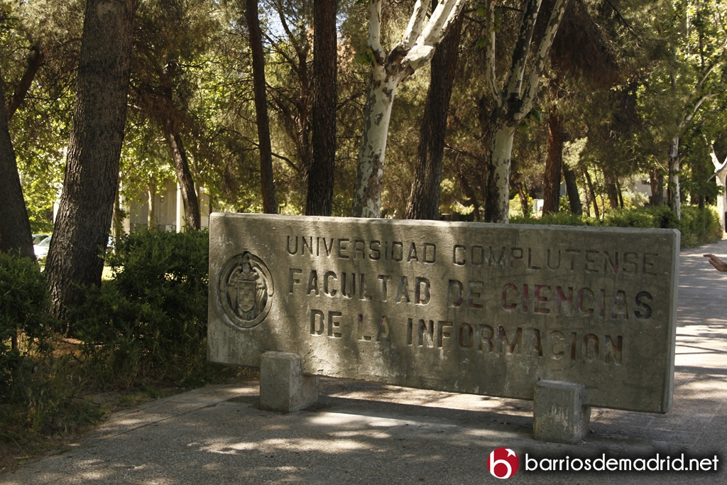 Ciudad universitaria (11)