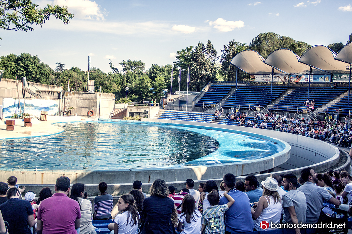 delfinario zoo madrid
