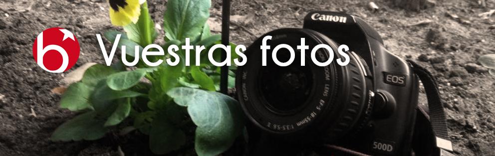 Fotografías enviadas por los seguidores de Barrios de Madrid