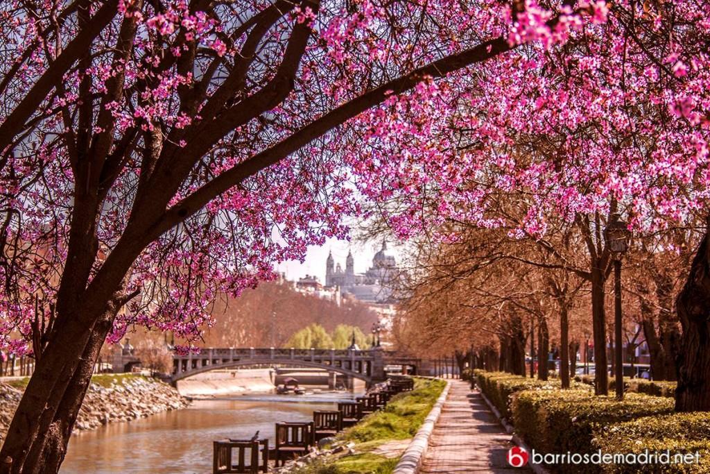 madrid rio paseo romantico san antonio de la florida